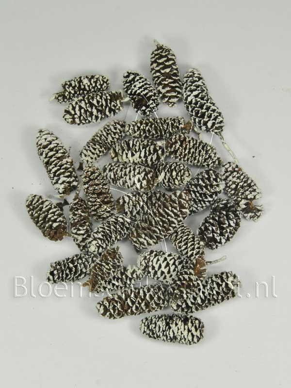 Materialen voor bloemschikken, birch pine frosted
