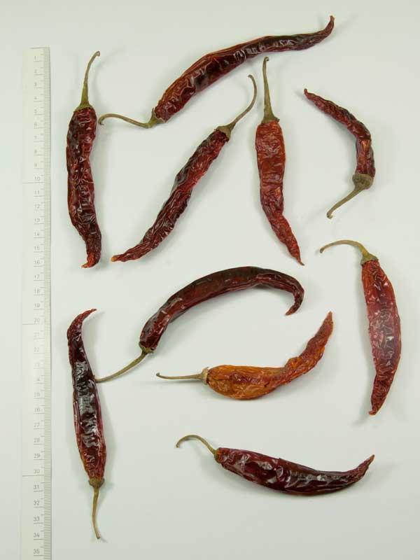 Chili pepers groot