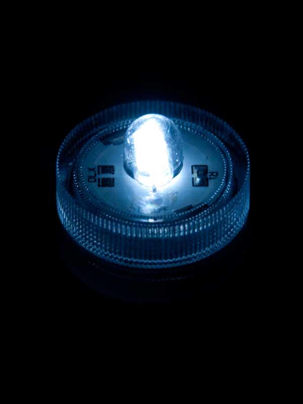 Onderwater LED licht, wit, per stuk