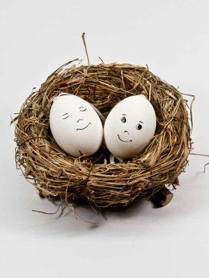 vogelnest met beschilderde eieren
