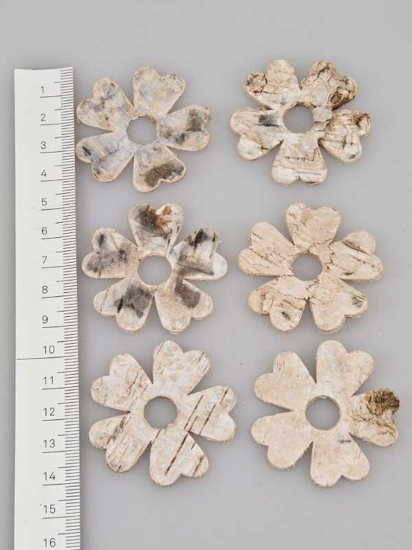 Berkenschors bloem naturel - 6 stuks