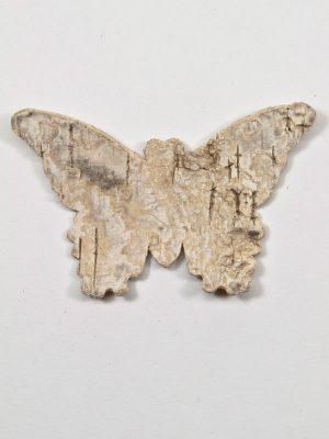 berkenschors-vlinder
