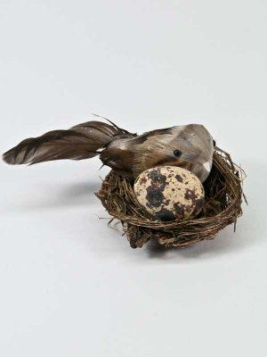 nestje met vogeltje en ei