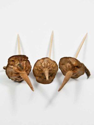 cederbasis op pin 3 stuks