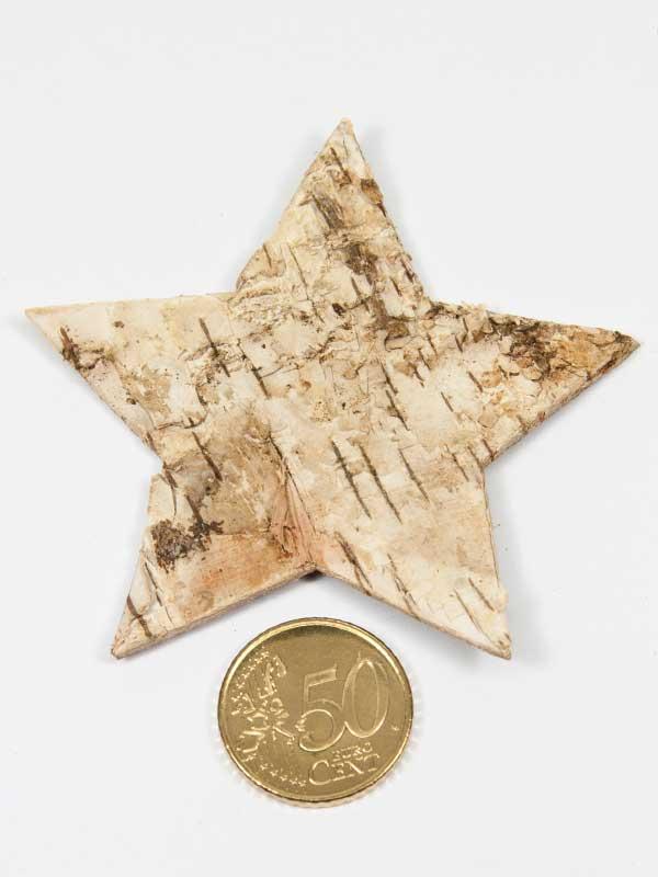 Berkenschors ster vergeleken met een 50 eurocent munt