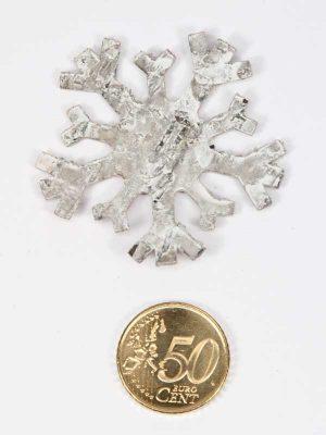 berkenschors sneeuwvlok vergeleken met 50 eurocent
