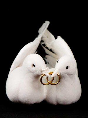 duivenbruidspaar met ringen in hun snaveltjes