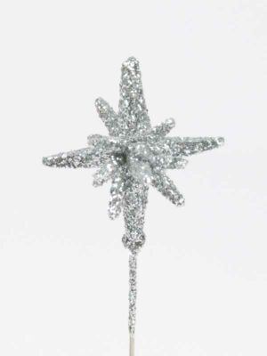 Drie dimensionale decoratiespeld ster