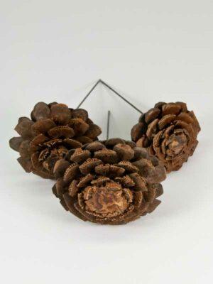 dennenappels omgevormd tot bloemen