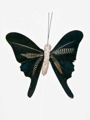 vlinder zwart met grijs